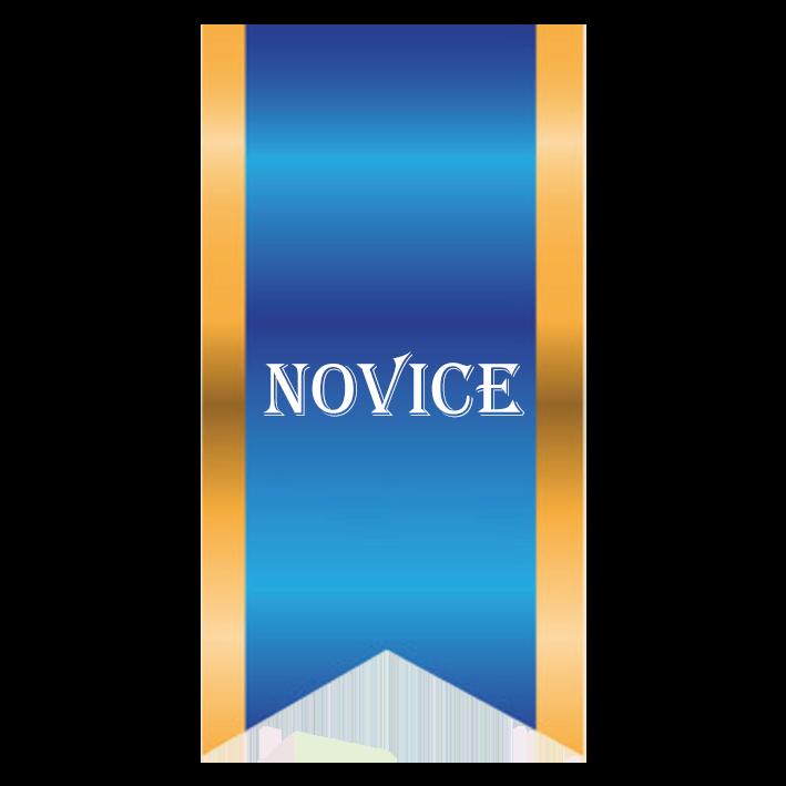 ACW CODING NOVICE LEVEL II